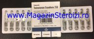 Testosterone Enanthate 250